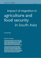 Impact of migration in agriculture and food security in South Asia